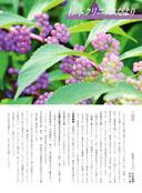 杉本クリニック便りVol.97